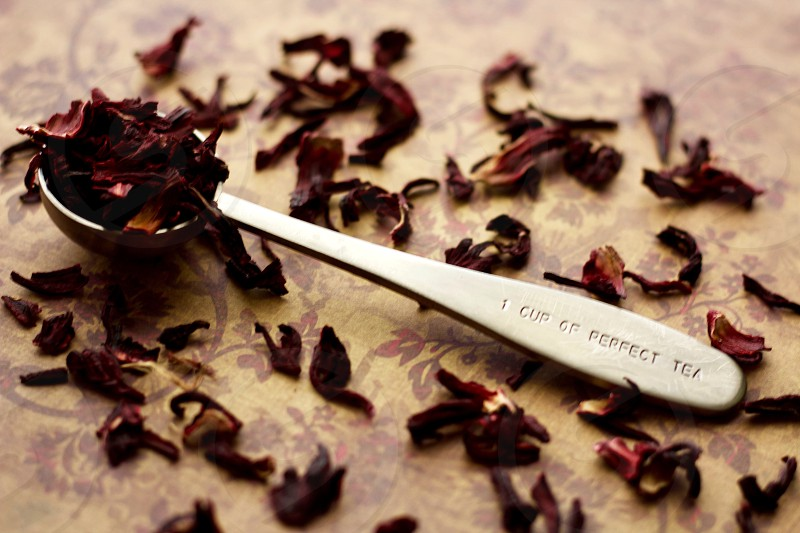 """Angled view of a  stainless steel measuring spoon imprinted with the phrase """"1 CUP OF PERFECT TEA"""" filled with dried hibiscus petals on a brown and burgundy surface with scattered hibiscus tea photo"""