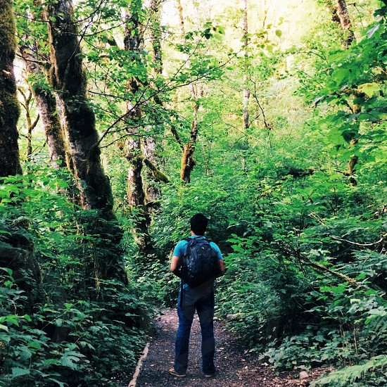man wearing black backpack in middle of green forest trees photo
