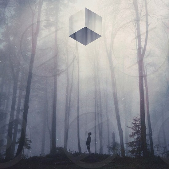 man standing under the cube in forest photo