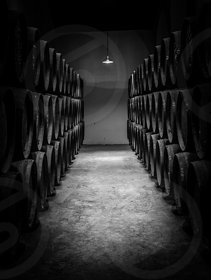 Lined up and stacked wine barrels at the sherry producre Tio Pepe in Jerez Spain photo