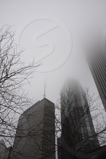 Looking up in Chicago? What do you see?  photo