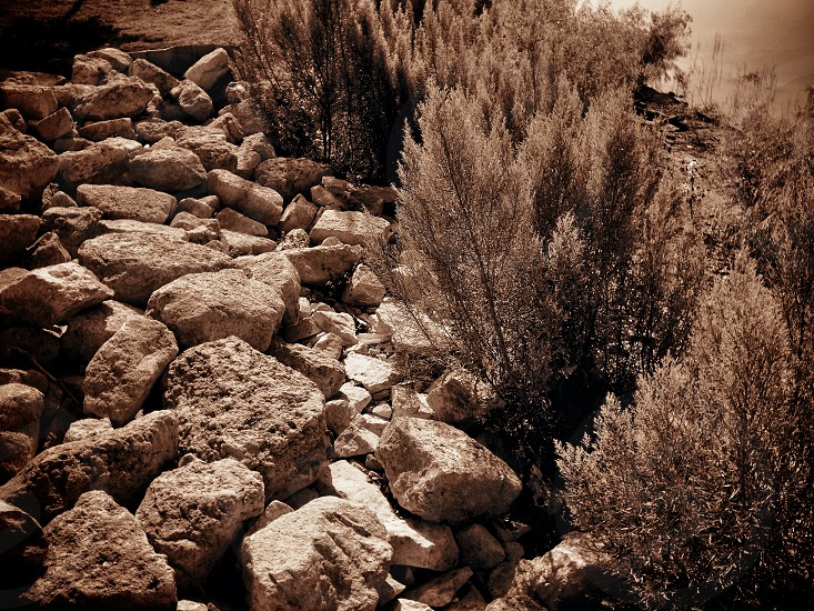 photograph of rock formation photo