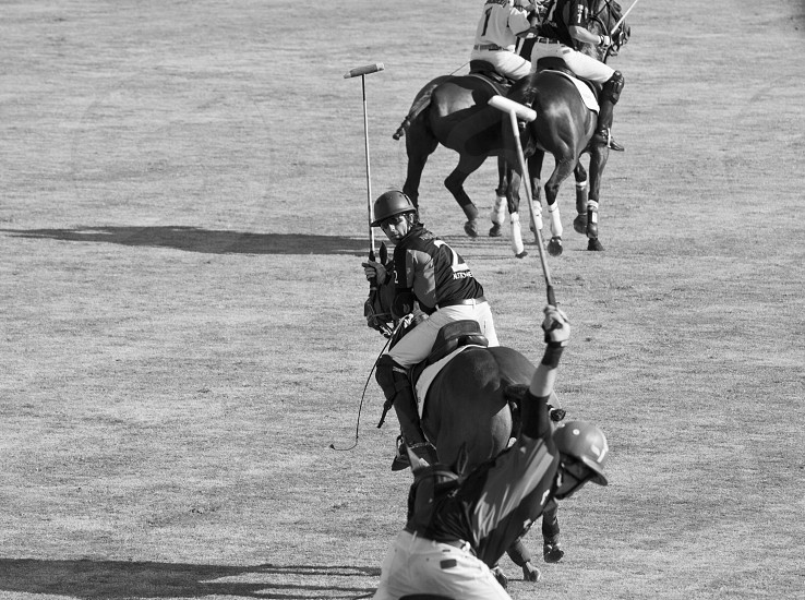 man riding on horse photo