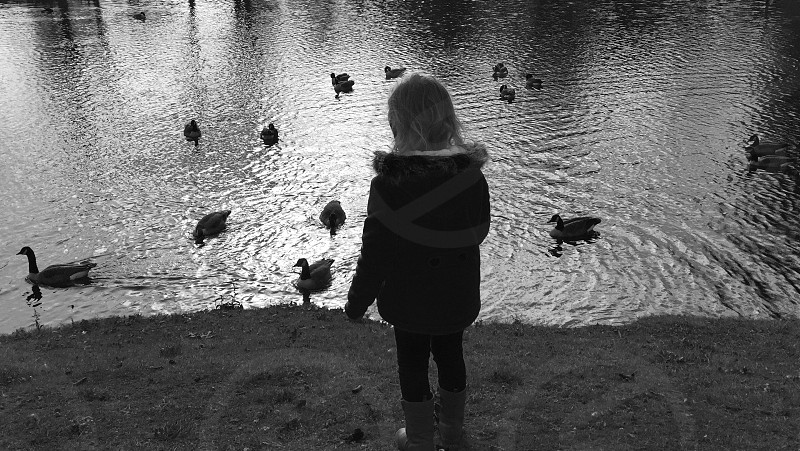 girl in gray coat standing in front of lake with ducks photo
