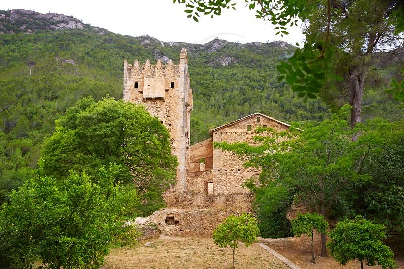 ruined monastery Jeronimo Nuestra senyora de la Murta in Alzira Valencia at Spain photo