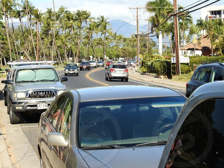 Maui Scenic Highway       photo