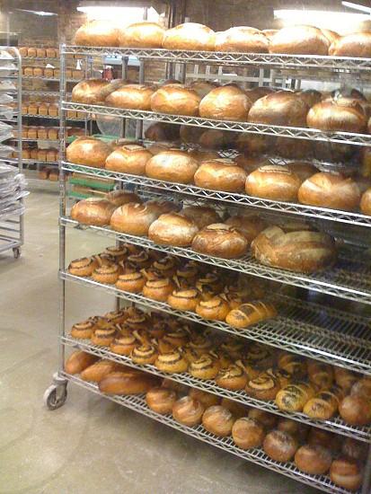 Fresh baked bread warm on the rack. photo
