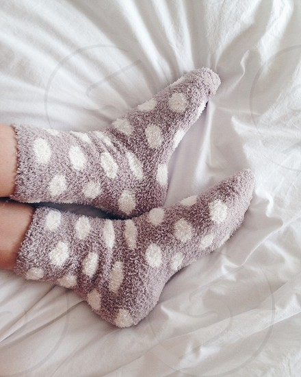 person wearing white and gray polka dots cotton socks photo