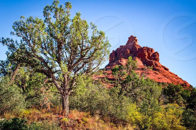 Looking towards Bell Mountain near Sedona Arizona photo