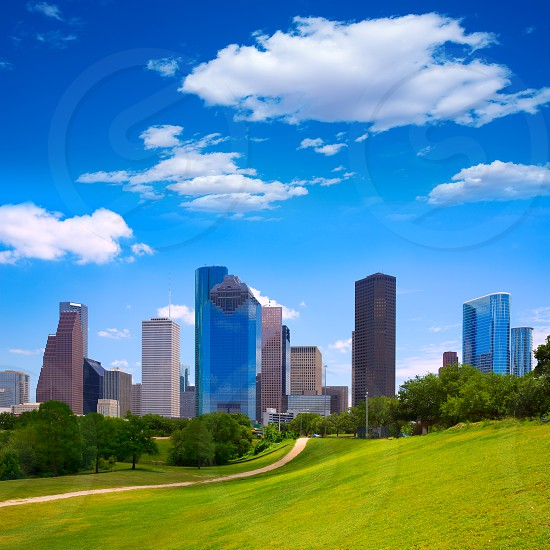 Houston Texas Skyline with modern skyscapers and blue sky view from park lawn photo