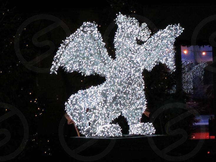 Christmas Dragon lights photo