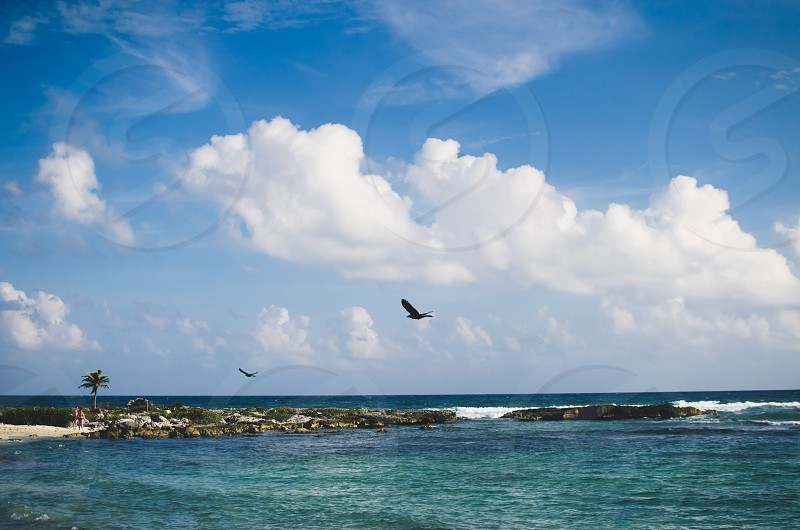 Turquoise ccean view with blue sky and clouds birds flying in the distance. Riviera Maya Mexico. photo