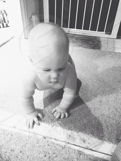 Crawling baby daughter photo