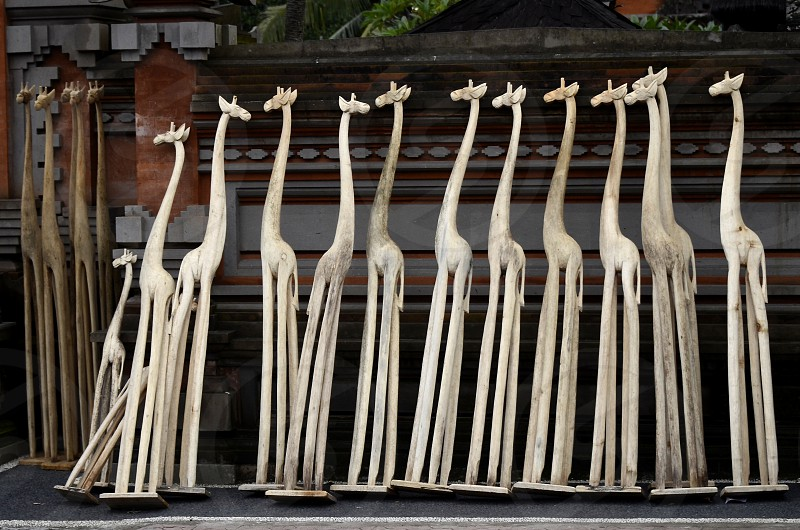 On a sidewalk in Ubud Bali Indonesia in front of the workshop of a wood sculptor works in progress: wooden giraffes photo