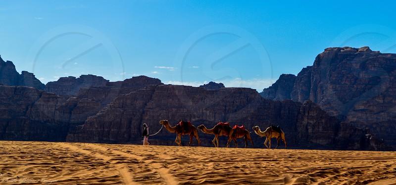 In Wadi Rum Jordan.  photo