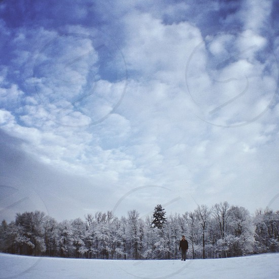 Winterscape photo