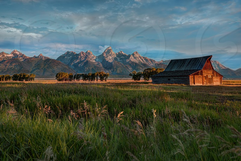 The morning sun warms the valley of Jackson Hole Wyoming and sets the Grand Tetons a beautiful old barn and the waving grasses aglow in that gorgeous golden morning light. photo