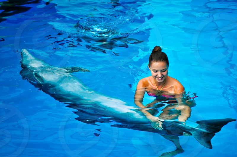 swimming dolphin swimming-pool blue water fish girl smile young friend friendship animal mammal nature recreation photo