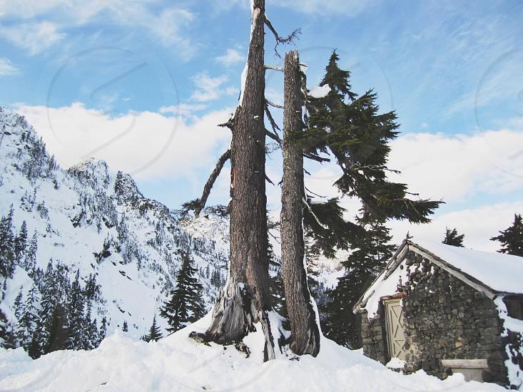 Mt. Baker WA photo