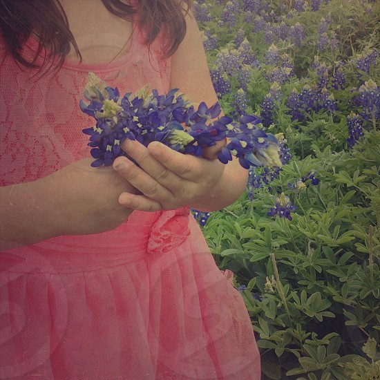 Girl wearing a pink dress holding the violet flowers photo