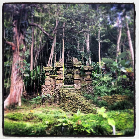 Jungle temple Bali Indonesia. #surfpraylove photo