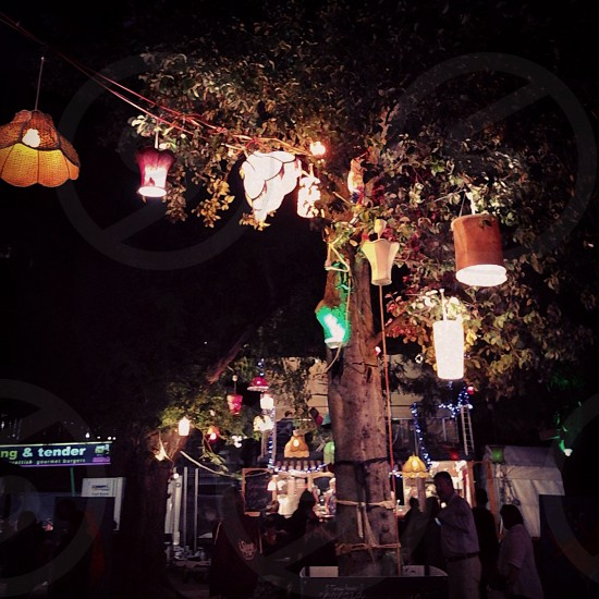 The Garden of Unearthly Delights Adelaide. Fringe Festival photo
