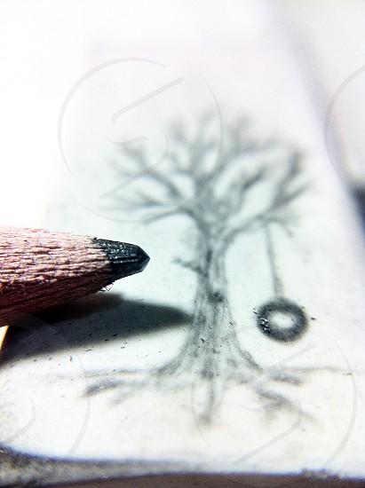 black tree with swing illustration photo
