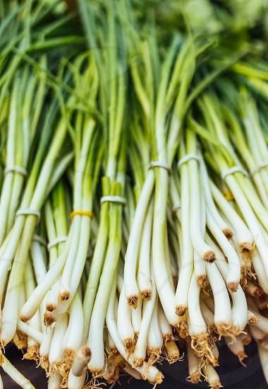 Organic spring onions on market photo