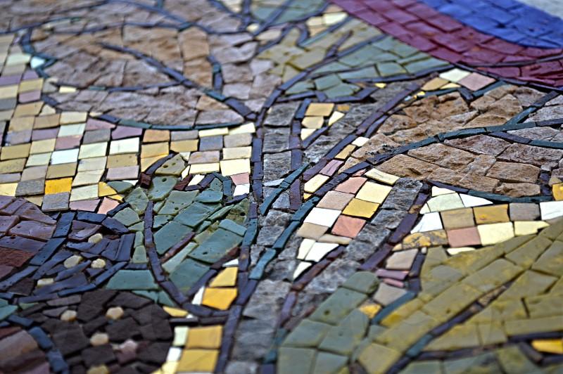 multicolored crack tiles tree art photo