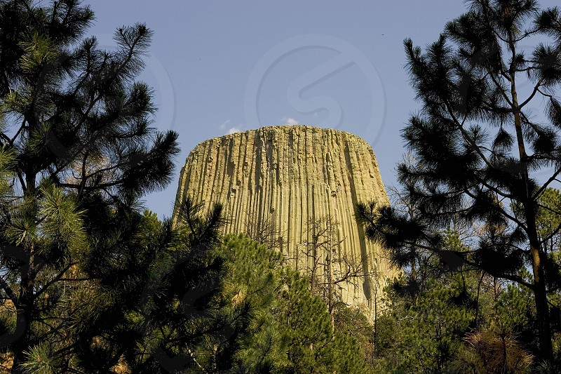 Devil's Tower in Devil's Tower WY photo