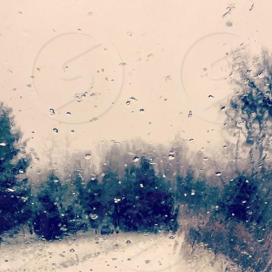dew drops on moist glass photo