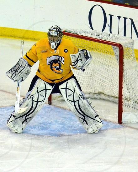 Quinnipiac University hockey Hamden CT photo