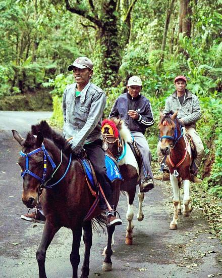 three men in jackets riding on horses photo