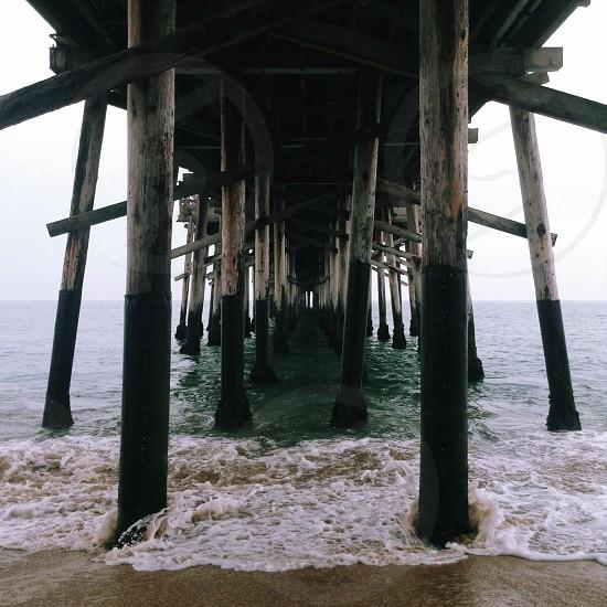 brown wooden dock photo