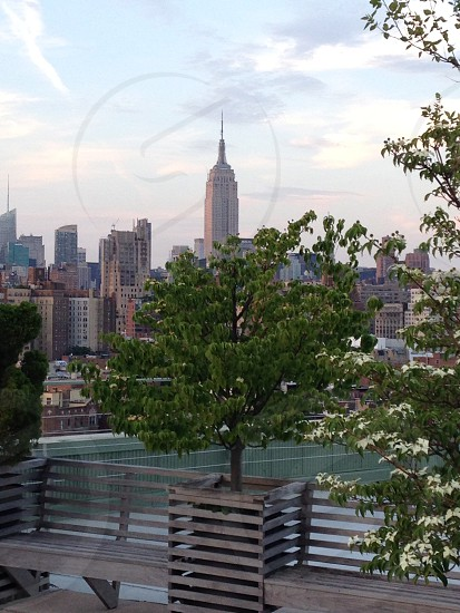 Empire State from West Village Roof Garden photo