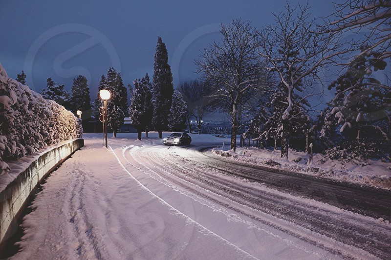 car driving through snow covered road through trees at night photo