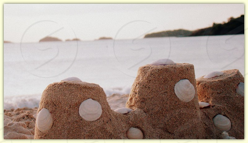 grey and brown sand with white shells near body of water photo