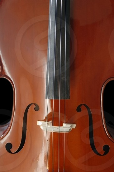 Close up of a cello.  Classical musical instrument photo