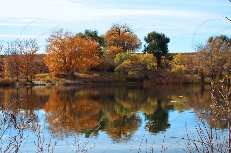 Autumn in Denver photo