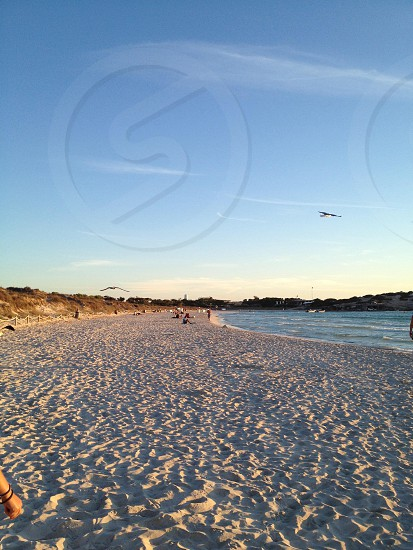 Formentera beach paradise photo