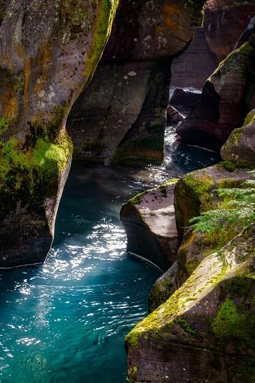 Avalanche Creek photo
