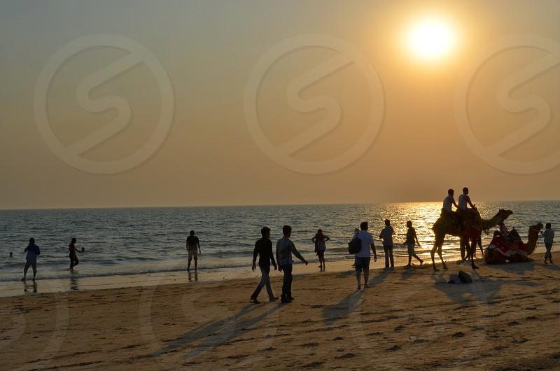 Mandvi beach photo