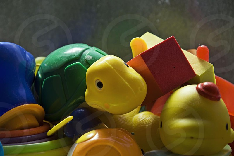 yellow and green turtle plastic toy photo