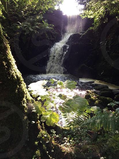 Waterfall in the fall photo