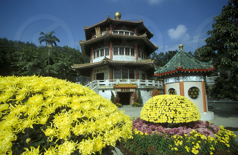 a traditional chinese Temple in Hong Kong in the south of China in Asia. photo