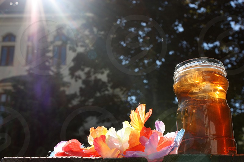 iced tea glass drink sunshine summer photo