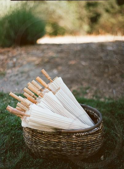 umbrellas favors wedding photo