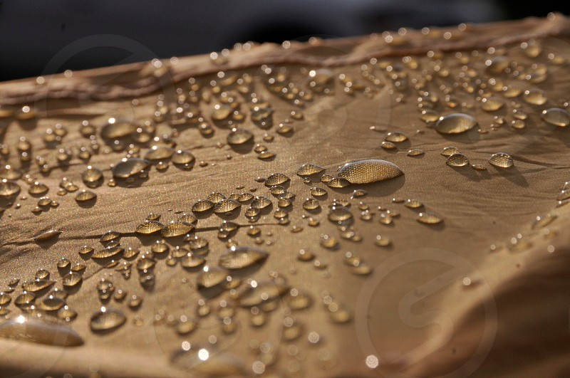 water drop on brown surface photo