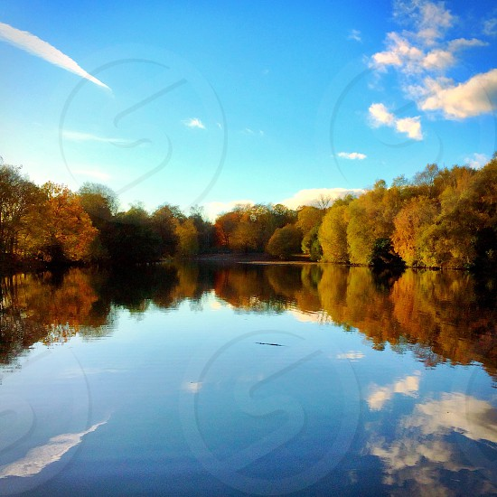 Autum reflections water pond trees colours sky light nature landscape  photo