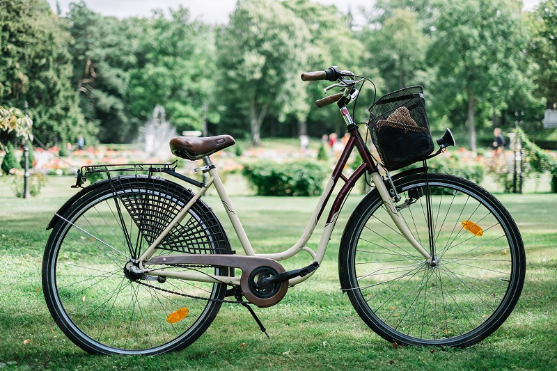 parked cruiser bicycle on green grass photo